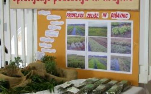 Stojnica programa Upravljanje podeželja in krajine